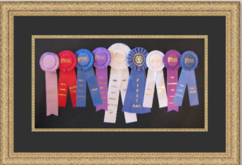 Picture Framing awards