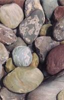 River Rocks I by Karen Eckelmeyer
