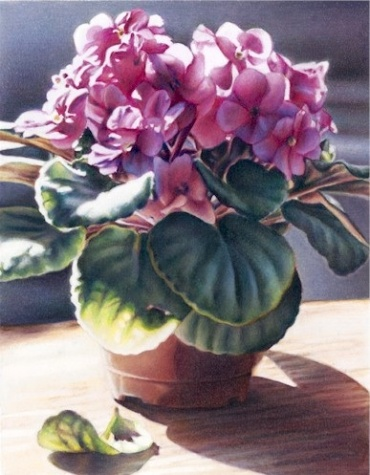 Mothers Day African Violet Giclee by Karen Eckelmeyer
