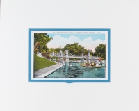 Boston Bridge and Swan Boats postcard